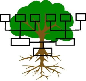 genealogical_family_tree